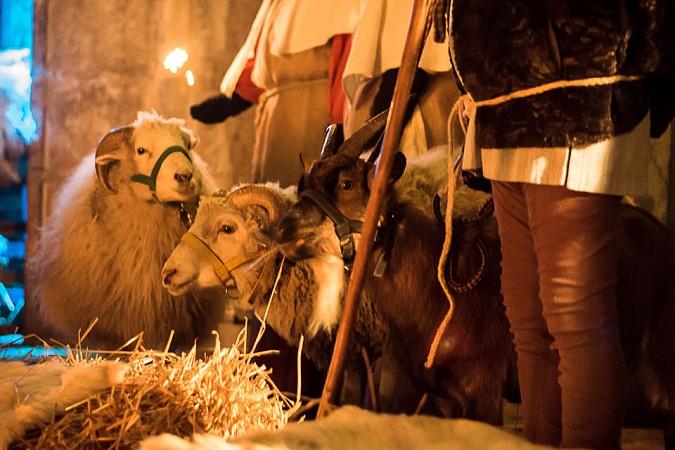 Karlsbrunn Weihnachten 2016 - Hochzeitsfotograf Saarland-054.jpg